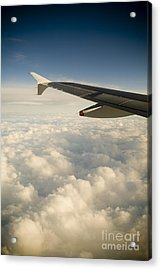 Passenger View Acrylic Print by Tim Hester