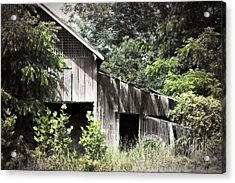 Passing Of Time Acrylic Print by Tom Gari Gallery-Three-Photography