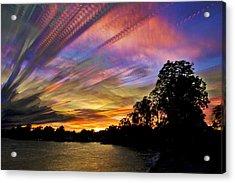 Pastel Pallet Acrylic Print by Matt Molloy