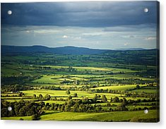 Pastoral Fields, Near Clonea, County Acrylic Print by Panoramic Images