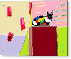 Patchwork Sophie  Acrylic Print by Anita Dale Livaditis