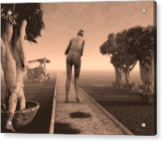 Path In Life Acrylic Print by Bob Orsillo
