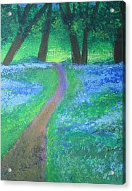 Path In Woods Acrylic Print by Diana Riukas