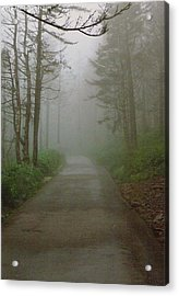 Path To Clingmans Dome Acrylic Print by Karin Thue
