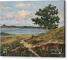 Path To The Harbor Acrylic Print by Gregory Arnett