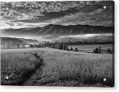 Path To The Mountains Acrylic Print by Andrew Soundarajan