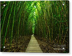 Path To Zen Acrylic Print by Jamie Pham