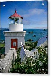 Patrick's Point Lighthouse Acrylic Print by Jim DeLillo