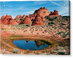 Paw Hole Reflections Acrylic Print by Mike  Dawson