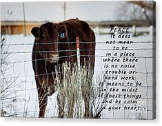 Peace And Calm Acrylic Print by Janice Rae Pariza