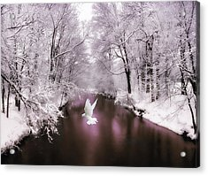 Peace On Earth   Acrylic Print by Jessica Jenney