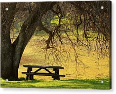 Peace  Acrylic Print by Rima Biswas