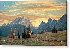 Peaceful Evening - Tetons Acrylic Print by Paul Krapf