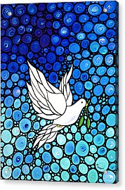Peaceful Journey - White Dove Peace Art Acrylic Print by Sharon Cummings
