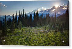 Peaceful Mountain Flowers Acrylic Print by Mike Reid