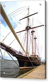 Peacemaker Acrylic Print by Gordon Elwell
