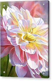 Peach And Yellow Dahlia Acrylic Print by Sharon Freeman
