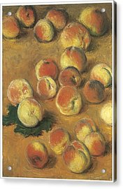 Peaches Acrylic Print by Claude Monet