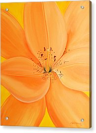 Peachy Summer Acrylic Print by Maria Williams