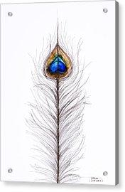 Peacock Abstract Acrylic Print by Tara Thelen