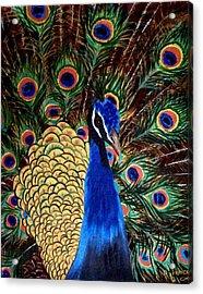 Peacock Acrylic Print by Debbie LaFrance