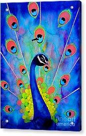 Peacock Acrylic Print by Robert Hooper