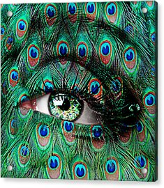 Peacock Acrylic Print by Yosi Cupano