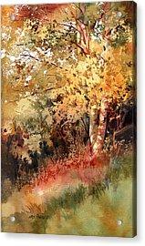 Peak Color Acrylic Print by Kris Parins