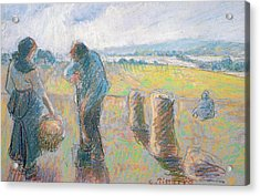 Peasants In The Fields Acrylic Print by Camille Pissarro