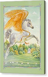 Pegasus Acrylic Print by Lynn Bywaters