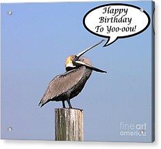 Pelican Birthday Card Acrylic Print by Al Powell Photography USA