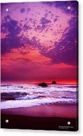 Pelican State Beach California 02 Acrylic Print by Rafael Escalios