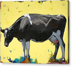 People Like Cows #12 Acrylic Print by David Palmer