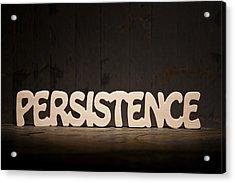 Persistence Acrylic Print by Donald  Erickson