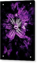 Petals From The Purple Acrylic Print by Amanda Eberly-Kudamik