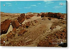 Petrified Forest National Park Acrylic Print by Ruth  Housley