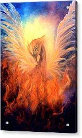 Phoenix Rising Acrylic Print by Marina Petro