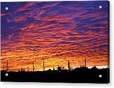 Phoenix Sunrise Acrylic Print by Jill Reger