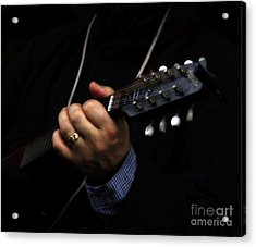 Picking On Gibson Acrylic Print by Steven  Digman