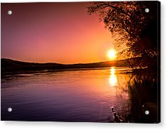 Pink Evening Acrylic Print by Jahred Allen