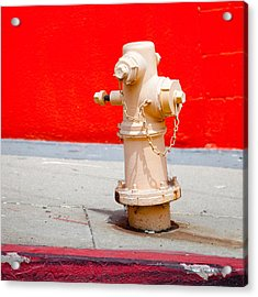 Pink Fire Hydrant Acrylic Print by Art Block Collections