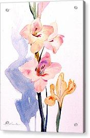 Pink Gladiolas Acrylic Print by Mark Lunde