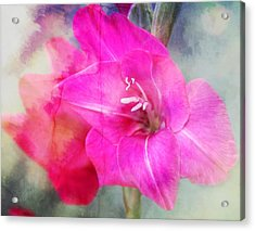 Pink In The Clouds Acrylic Print by Cathie Tyler