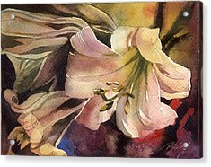 Pink Lilies Acrylic Print by Alfred Ng