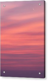 Pink Moon Acrylic Print by Bill Wakeley