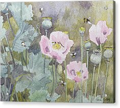 Pink Poppies With Bees Acrylic Print by Rosalie Bullock