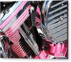 Pink Power Acrylic Print by Samuel Sheats