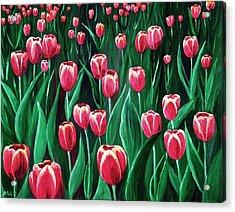 Pink Tulip Field Acrylic Print by Anastasiya Malakhova