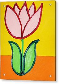 Pink Tulip Acrylic Print by Matthew Brzostoski