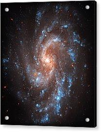 Pinwheel Galaxy Acrylic Print by Jennifer Rondinelli Reilly - Fine Art Photography